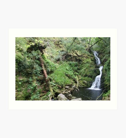 Irelands water scape Art Print