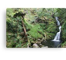 Irelands water scape Canvas Print