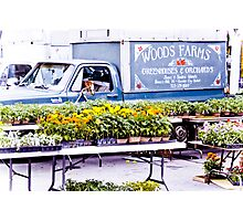 Woods Farms Photographic Print
