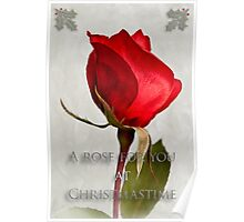 One red rose holiday card Poster