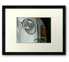 Jaguar's Eye Framed Print