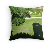 shadowy reflections Throw Pillow