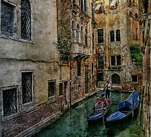Venice Backwater by Ann Garrett