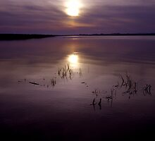 Wexford sunset by Ramona Farrelly