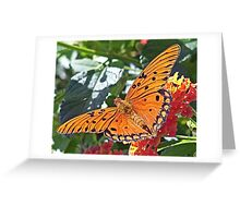 Caught in the Garden Greeting Card