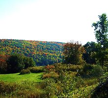 UPSTATE NEW YORK COUNTRYSIDE by JoAnnHayden