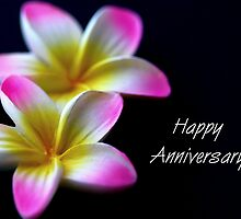 Happy Anniversary by ~ Fir Mamat ~