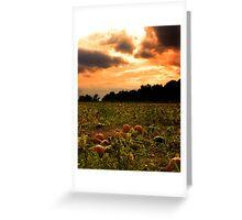 Pumpkin Skies Greeting Card