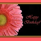 Pink Gerbera Birthday Card by Martie Venter