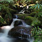 Cement Creek 2 by KeepsakesPhotography Michael Rowley