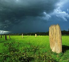termite storm by Tony Middleton