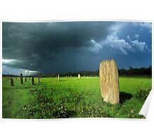 termite storm Poster