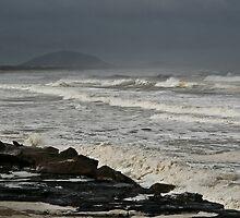 Wild Seas by Nicholas Coote