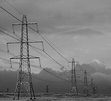 Pylons by Hilary Robertshaw