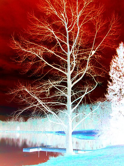 Red & Blue Tree by Sarah Cook