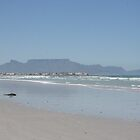 Table Mountain Cape Town by Rob Mc Alister