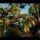 watonga lake by Andrew Cowell