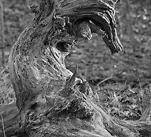 Twisted Unicorn  by Bahoke