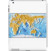 World Map - Recycled iPad Case/Skin