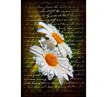 Simple Love.... Photographic Print