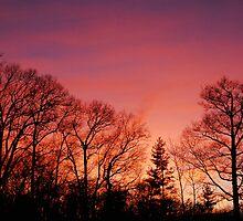 Sky by Gabriel Martinez