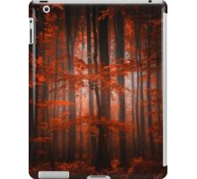 Red Parallel Universe iPad Case/Skin