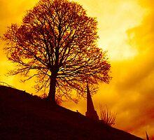Up the hill by Stuart Cottam