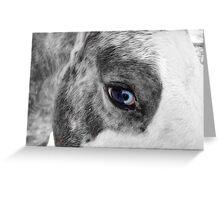Glassy Eye Greeting Card