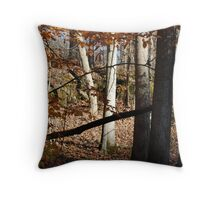 Fall in Appalachia   Copyright 2008 By PhyllisAnne Pesce Throw Pillow