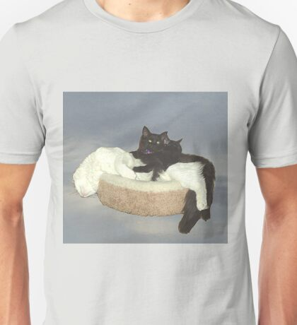 Cats in the sky Unisex T-Shirt