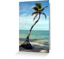 Lonely Palm Greeting Card