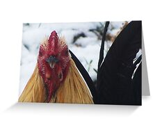 I`m Not A Chicken! Greeting Card