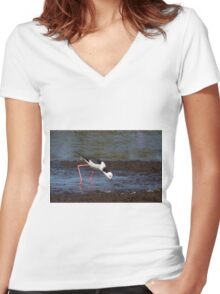 Himantopus himantopus Women's Fitted V-Neck T-Shirt