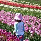 Tulip Farm by ~ Fir Mamat ~
