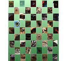 The Natural Eye Photographic Print