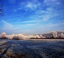 Winter Wonderland by stijn
