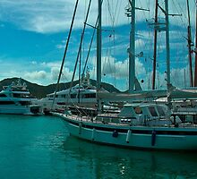 Antiguan Harbour Life by Alec Owen-Evans