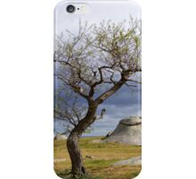 The nature of progress iPhone Case/Skin