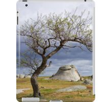 The nature of progress iPad Case/Skin