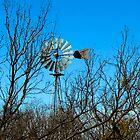 West Texas Windmill by Joe Hewitt