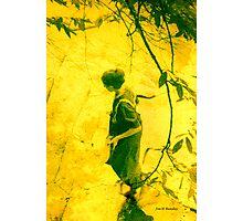 A Walk in the Sun Photographic Print