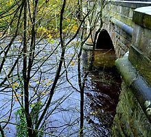 The Old Garrion Bridge , Scotland by Bill Lighterness
