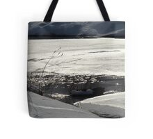 Winter scene #3 Tote Bag