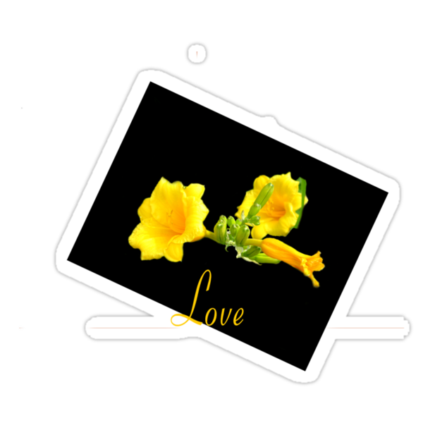 Love in Yellow by Brad Sumner