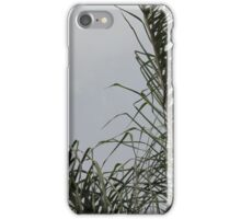 Just palm tree iPhone Case/Skin