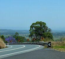 Peachester Range Qld Australia by sandysartstudio