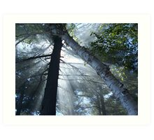 Smokey Rays Art Print