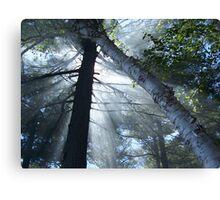 Smokey Rays Canvas Print