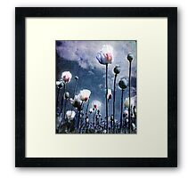 Shine Through Framed Print