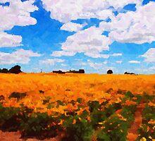 Poppy Fields near Mt. Angel, Oregon by Marylamb